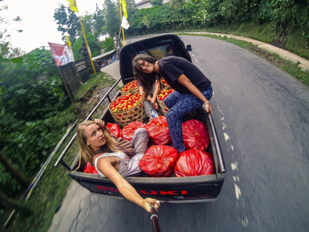Malaysia - tomatos